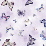 butterflies_big