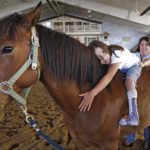 Horseback riding improves children's cognitive ability
