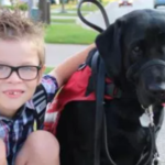 Family loses fight for autistic son to have service dog in class